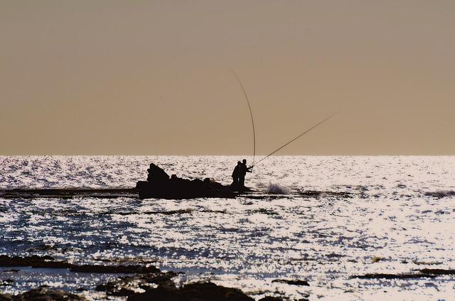 魚釣りから学ぶ,よりシンプルに成果を出す方法