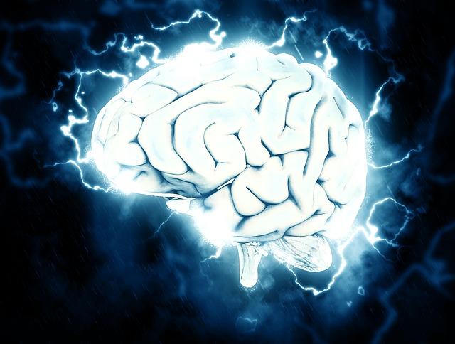 脳の生理機能に合わせて最も生産性の高い仕事をする方法