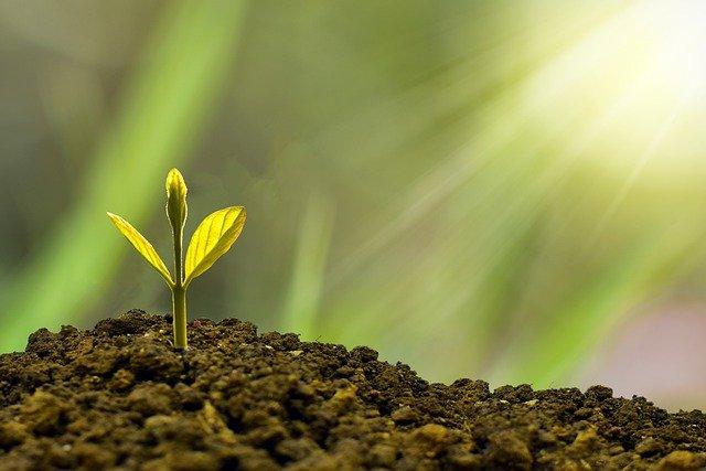 価値観の変遷や進化成長に対し自社のビジネスが追いついているか